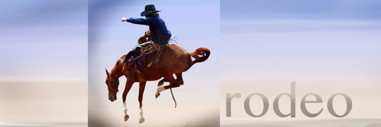 Interesting Things About Rodeos