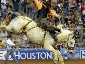 Cheap Houston Rodeo Tickets