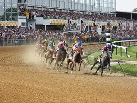 Cheap Preakness Stakes Tickets